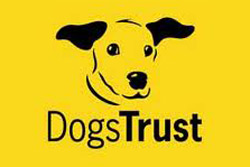 Supporting The Dog Trust